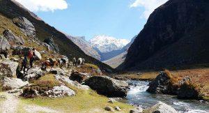 The Hampta Pass Trek: Everything to Know