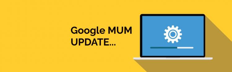 Everything About Google MUM1