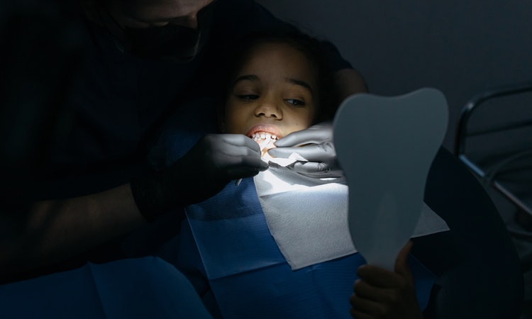 A Guide on How to Identify the Top Family Dentist